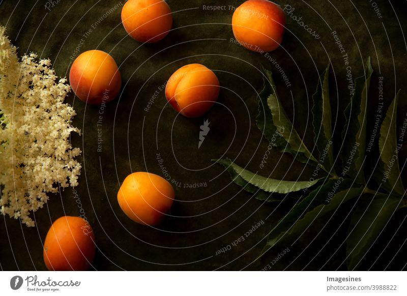 Food Fotografie. Nostalgische Lebensmittelkunst auf dunklem Hintergrund. Nektarinen, Pfirsiche, Blätter und Blüten von Holunder Kunst dunkel süss Essen Aprikose