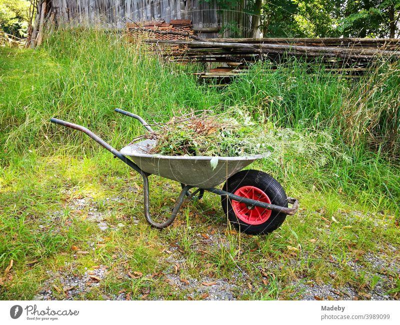 Schubkarre mit Gartenabfällen im Sommer im Grünen auf einem Bauernhof in Rudersau bei Rottenbuch im Kreis Weilheim-Schongau in Oberbayern Gartenarbeit Gärtner