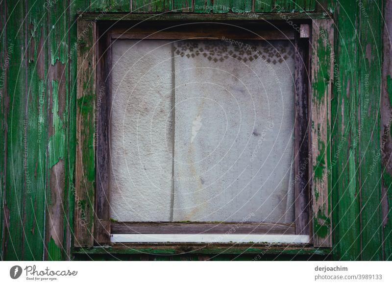 Altes Fenster mit zugezogenen Gardinen,die leicht verschmutzt sind , mit kleiner dunklen  Bordüre. Der Außen Rahmen  ist dunkel bis hellgrün. Menschenleer