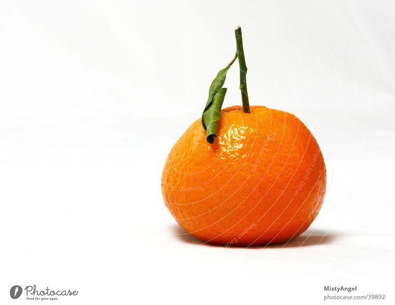 mandarine grün Ernährung orange Frucht Mandarine Vor hellem Hintergrund