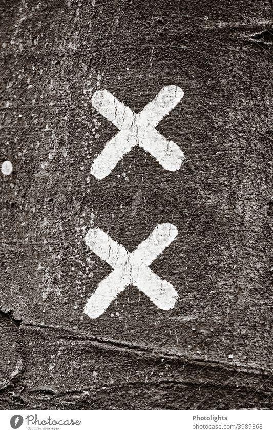 Zwei weiße Kreuze auf einem Baumstamm symbolisch Menschenleer Stamm Alleinsein Umwelt Außenaufnahme Verkehrswege Naturschutz Tag Gedeckte Farben