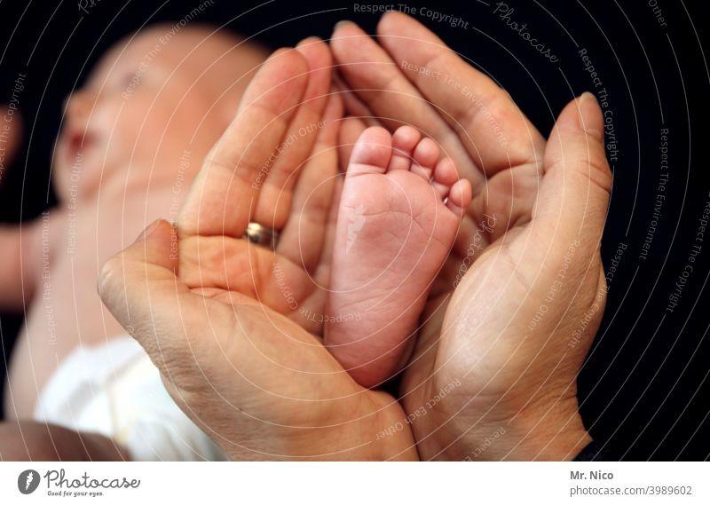 Hand und Fuß haben Hände Baby Zehen Familie & Verwandtschaft Familienglück festhalten Schutz Größenunterschied Geborgenheit Liebe Glück Vertrauen Gefühle Haut