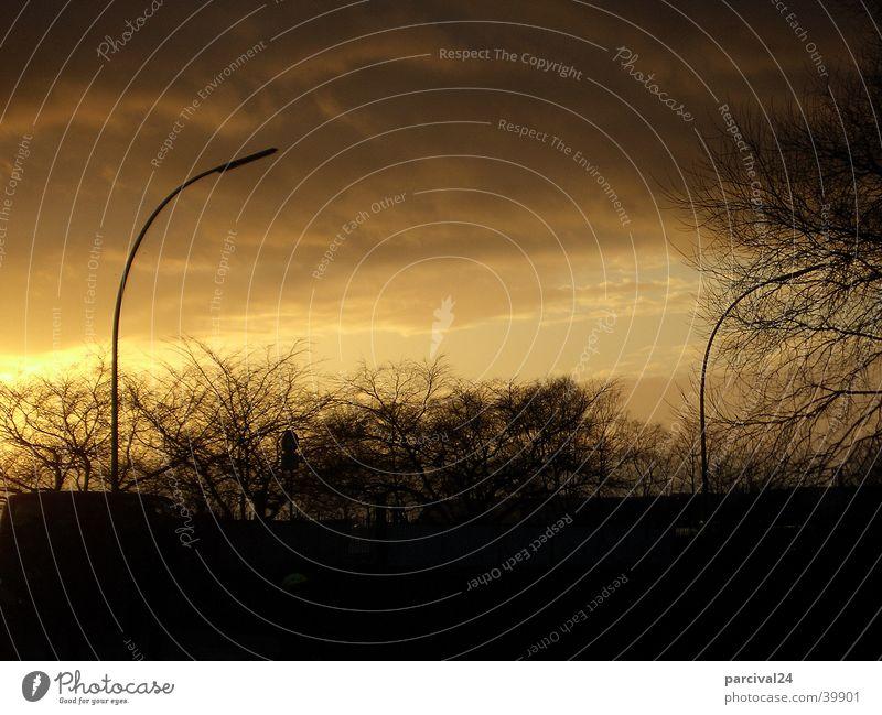 Himmel Sonnenuntergang Baum Straßenbeleuchtung Laterne Wolken Stimmung Strommast Gewitter