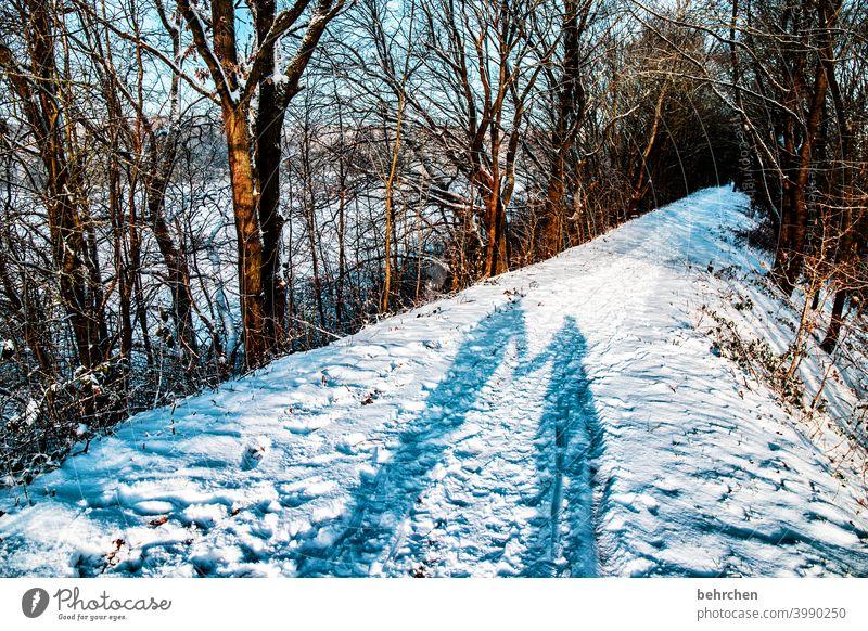 happy petersilie:)) Liebe zusammen Zusammensein gemeinsam Paar Hand in Hand Schatten Sonnenlicht Kontrast Licht Außenaufnahme Farbfoto Fußweg schön fantastisch
