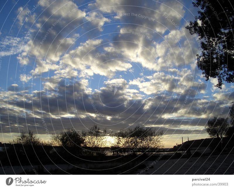 Herbsthimmel Wolken Sträucher Sonnenuntergang Stimmung Licht Himmel Landschaft Elbe Hamburg blau