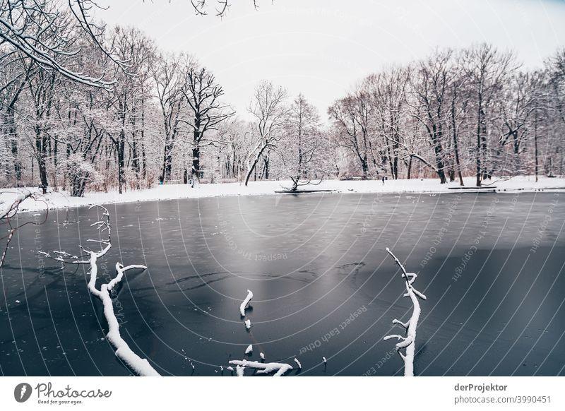 Winterlicher Karpfenteich im Treptower Park II Naturphänomene Gefahr einbrechen Städtereise Sightseeing Naturwunder gefroren Frost Eis Naturerlebnis