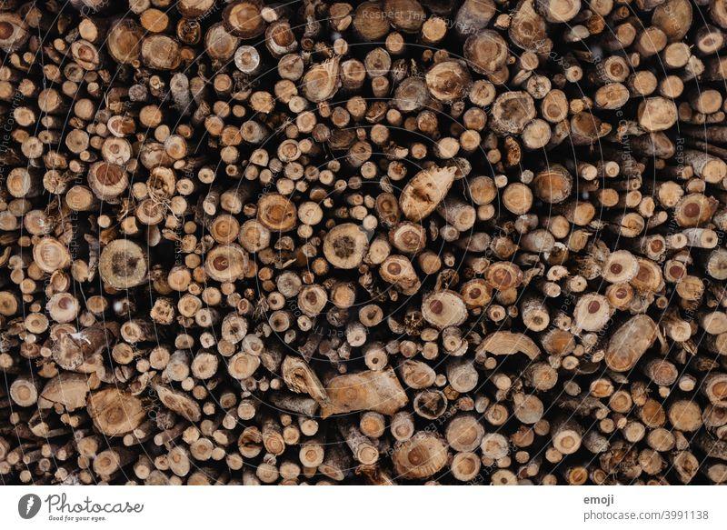 Hintergrund Wald Holz hintergrund wald holz natürlich natur holzschnitt kreis warm wallpaper