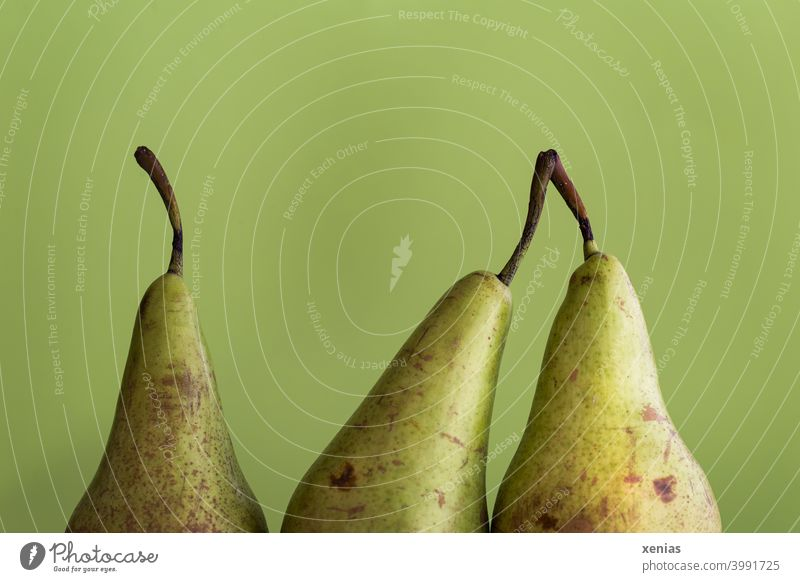 Drei Birnen vor Grün, zwei Früchte kuscheln Dreitagebart 30-45 Jahre grün Obst gesund Frucht Bioprodukte Vegetarische Ernährung Gesunde Ernährung Diät Nähe
