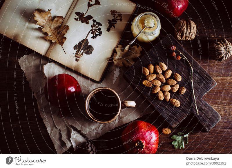 Buch mit Herbarium Nüsse und Früchte auf dem Tisch Lebensmittel altehrwürdig Hintergrund Muttern trocknen Saison Zusammensetzung gemütlich Decke fallen Feiertag