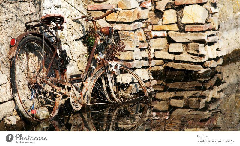 Rad auf dem Weg ins Wasser Mauer Fahrrad Hafen obskur Rost untergehen