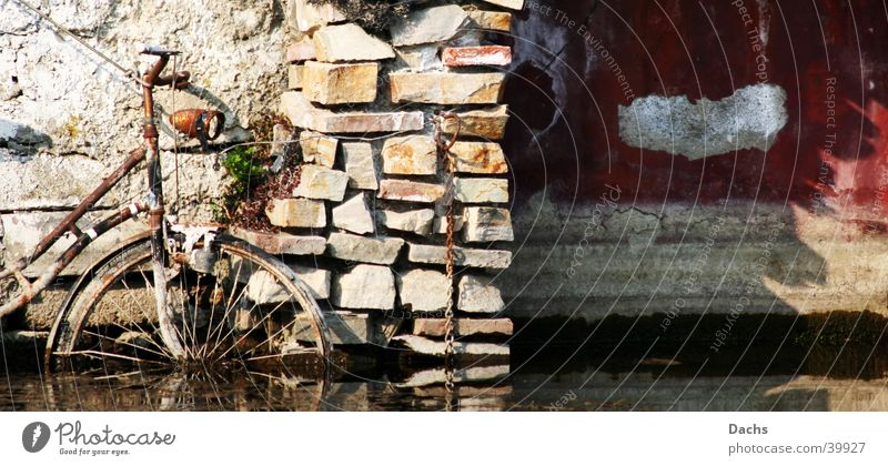 Rad untergehen obskur Fahrrad alt Wasser Küste Ufermauer Hafen Rost