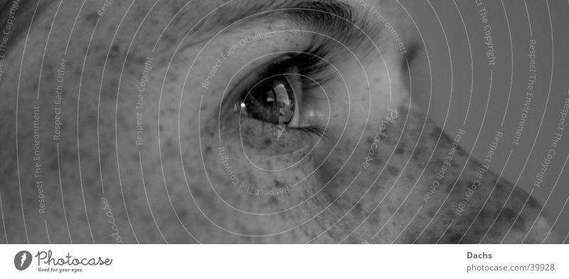 Fernweh Frau Gesicht Auge Sehnsucht