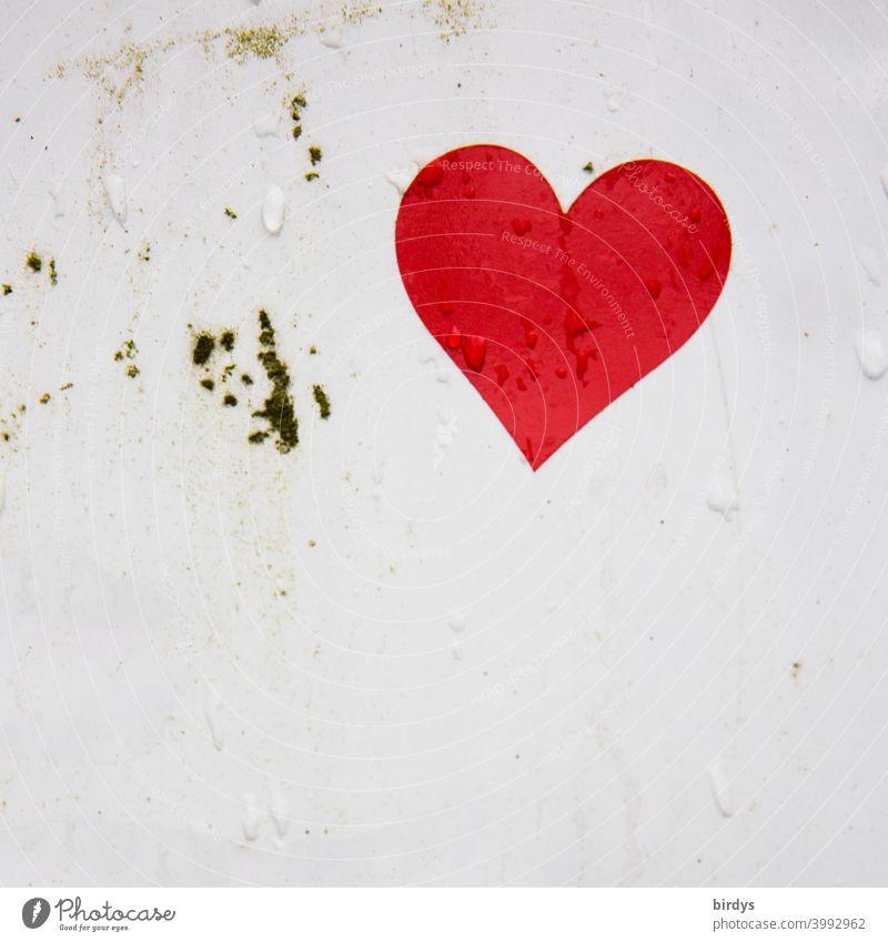 rotes Herz auf weißem Grund mit Wassertropfen. tränendes Herz wassertropfen Liebe Verliebtheit nass Romantik Gefühle Valentinsgruß Herzform Tropfen