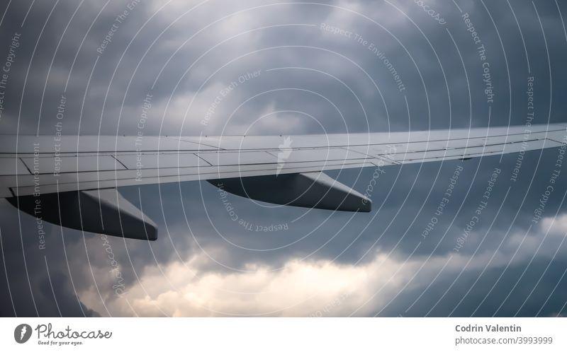 Flugzeugflügel am Himmel Raumfahrtunternehmen Air Flugreisen Fluggerät Fluggesellschaft Verkehrsflugzeug Flughafen Tier Luftverkehr Vogel Bomber Cloud Wolken