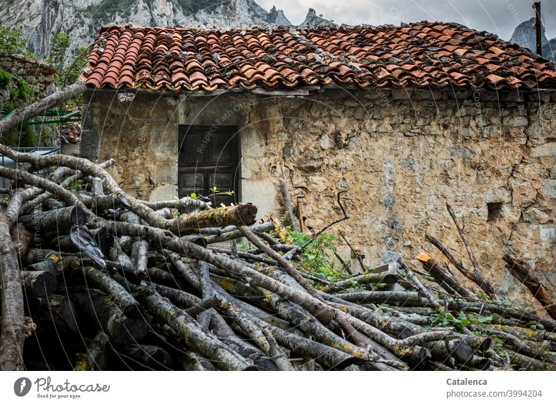 Konform | Holz vor der Hütte Architektur Bauwerk Haus Steinhaus Türe Dach Dachziegel Dachpfannen Brennhoz Gebäude Wand Fassade Berge schlechtes Wetter WInter