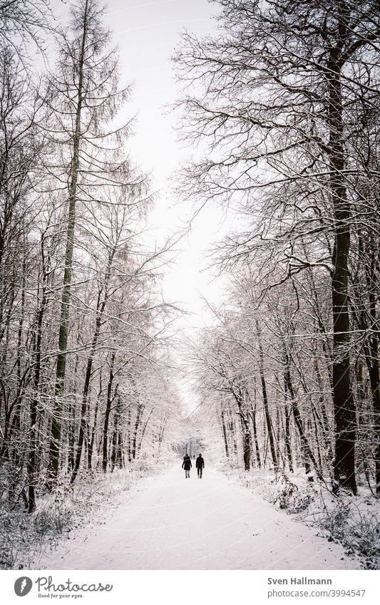 Paar läuft durch verschneiten Wald Glück Mann Frau Partnerschaft Zusammensein couple Liebespaar Vertrauen Zuneigung harmonisch Ehemann Ehefrau Baum Natur