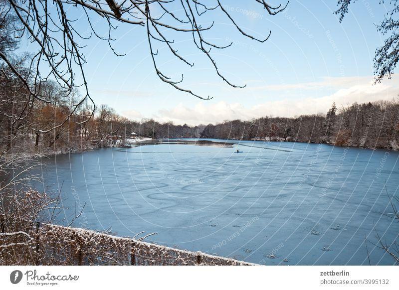 Plötzensee im Winter aussicht leer reinickendiórf berlin plötzensee winterferien frost eisdecke zugefroren zweig tiefenschärfe textfreiraum strauch schneedecke