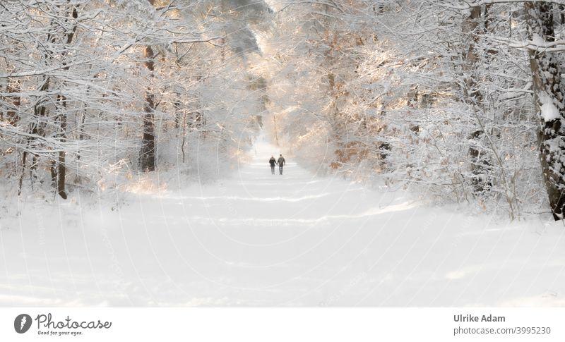 Winter im Märchenwald bei Worpswede - Pärchen geht Hand in Hand durch einen mit Schnee bedeckten Wald Paar Spaziergang Romantik Liebe Freiheit Partnerschaft