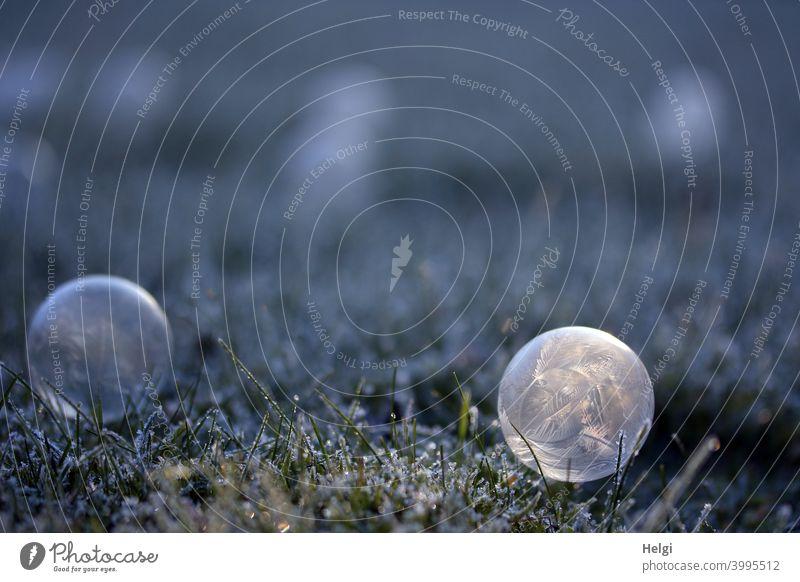 Eisblase mit Beleuchtung - gefrorene Seifenblase liegt im Gras mit Raureif und wird von der Sonne angestrahlt Kälte Eisstruktur Winter Muster Struktur Licht