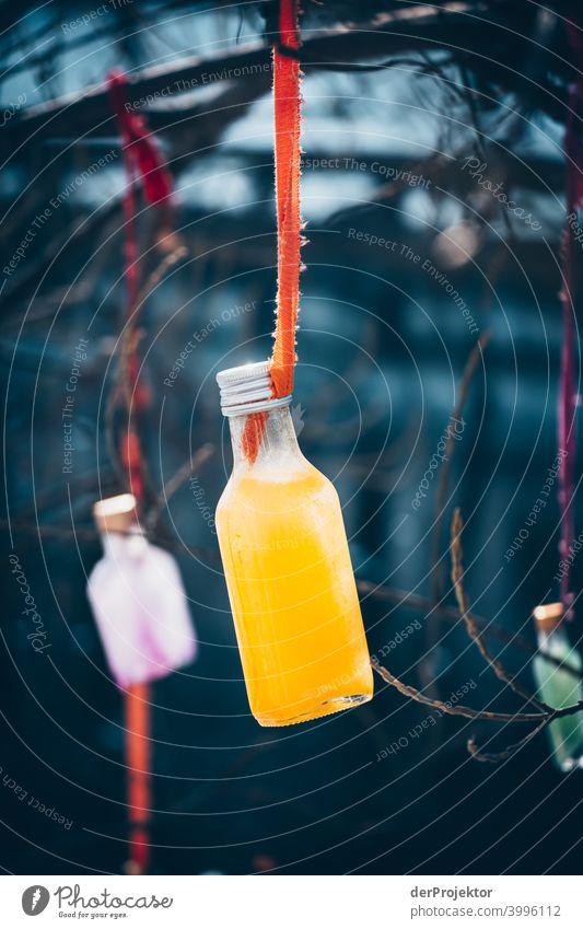 Flaschen am Baum im Winter in Kreuzberg Mauer Wand trendy Licht Tag Textfreiraum Mitte Außenaufnahme Experiment Textfreiraum oben Berlin Farbfoto