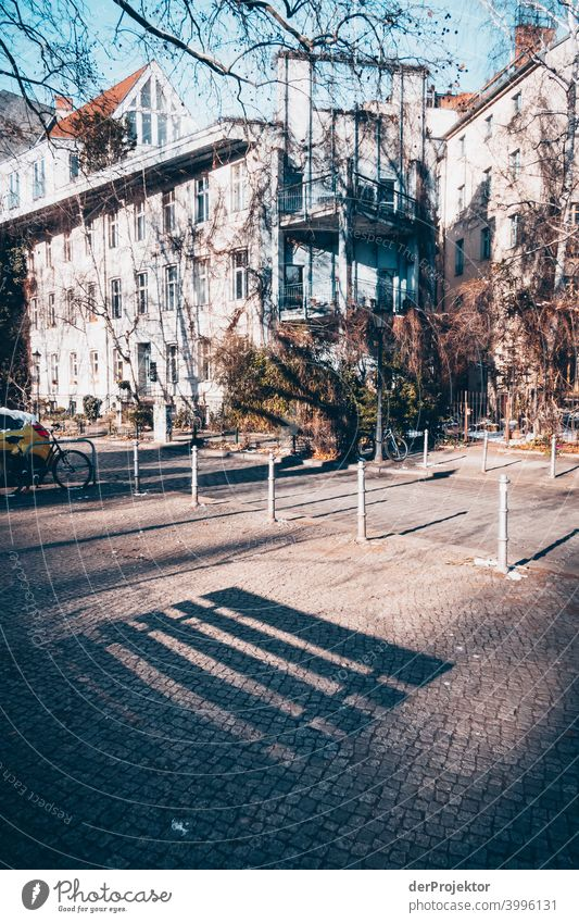 Bank- und Baumschatten im Winter in Kreuzberg Mauer Wand trendy Licht Tag Textfreiraum Mitte Außenaufnahme Experiment Textfreiraum oben Berlin Farbfoto