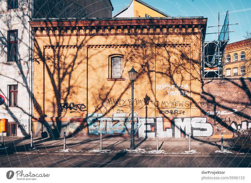 Baumschatten im Winter in Kreuzberg Mauer Wand trendy Licht Tag Textfreiraum Mitte Außenaufnahme Experiment Textfreiraum oben Berlin Farbfoto Himmel (Jenseits)