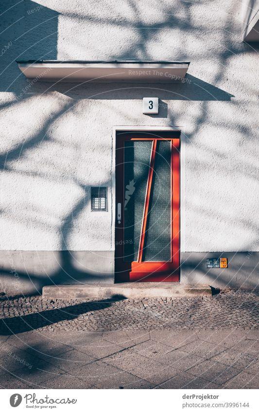 Baumschatten auf Haustür im Winter in Kreuzberg Mauer Wand trendy Licht Tag Textfreiraum Mitte Außenaufnahme Experiment Textfreiraum oben Berlin Farbfoto