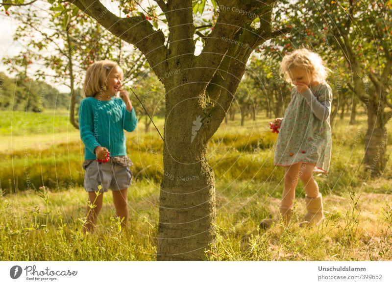 ....unterm Kirschbaum* Mensch Kind Natur Sommer Sonne Baum Mädchen Freude Umwelt Wiese Gefühle Spielen lachen Glück Garten Freundschaft