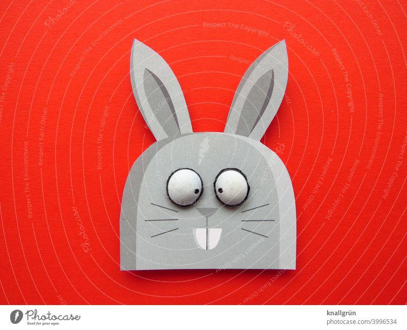 Hase Hase & Kaninchen Schielen Ostern Osterhase lustig Tier DIY Basteln witzig große Augen Farbfoto rot grau schwarz weiß Hasenzähne Hasenohren Papier
