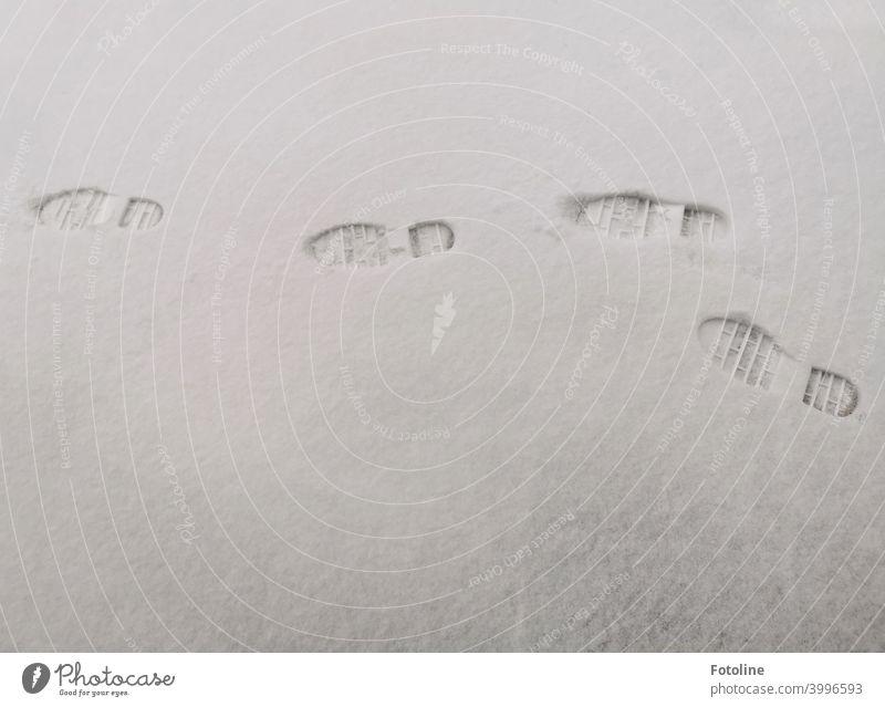Spuren im Schnee V. Hier war Fotoline auf der Pirsch Winter kalt weiß Frost Außenaufnahme Menschenleer Natur Tag Schneespur Fußspur Kontrast Wetter Umwelt