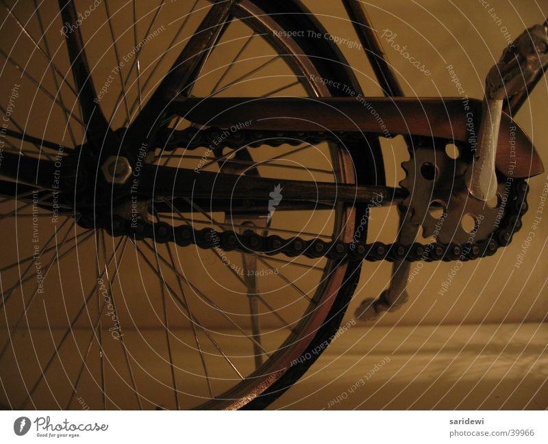 Das Rad Fahrrad Pedal vorwärts Mobilität Freizeit & Hobby Speichen Kette
