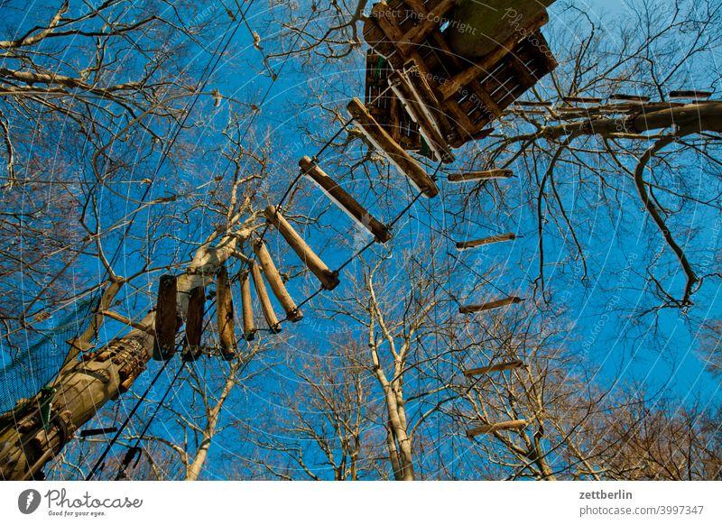 Hochseilgarten ast baum erholung ferien froschperspektive himmel jungfernheide klettergarten klettersport menschenleer natur pflanze ruhe stamm strauch