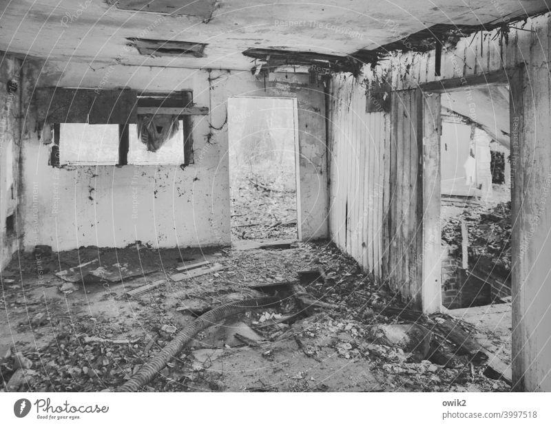 Komfortzone Leerstand abrissreif Abrissromantik Zerstörung Verfall Wandel & Veränderung dreckig Menschenleer alt trist trashig Patina abbröckeln Putz Tür