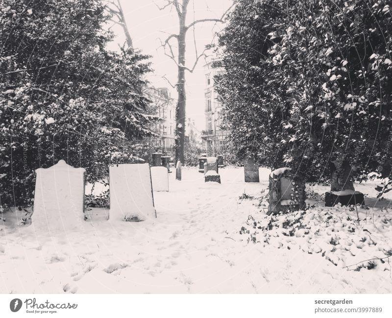 Friedlicher Friedhof der frierenden _________ Schnee Schneefall Schneelandschaft Schneespur schneebedeckt Winter kalt Außenaufnahme Natur weiß Menschenleer