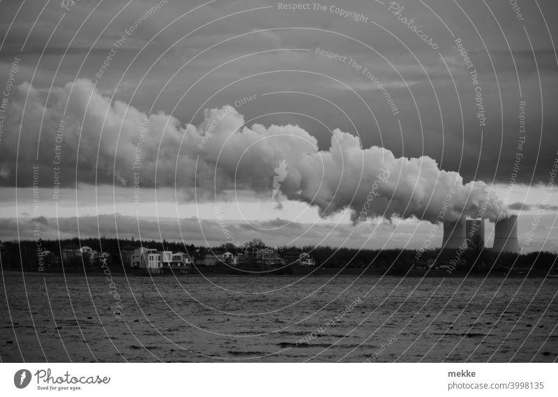 Kraftwerkswolke im grauem Dezemberwetter Wolken Kühlturm See bewölkt Schwarzweißfoto Wasser Wasserdampf Verschmutzung Energie Braunkohle Wind driften