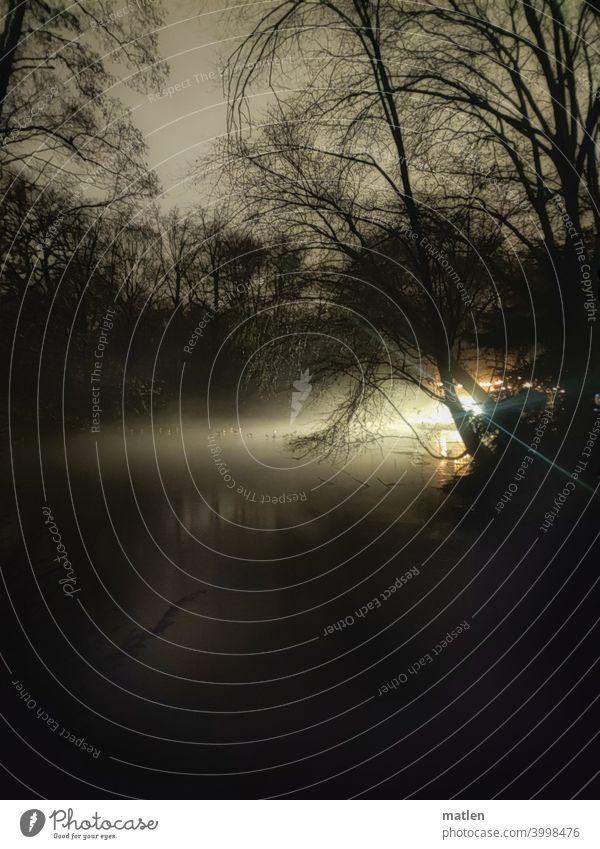 Fruehlingsnacht Eis Enten Nacht See kalt Lichtschein Außenaufnahme geheimnisvoll dunkel Menschenleer Einsamkeit Baum