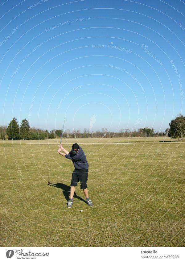 Golfer Himmel Mann Natur blau grün Baum Sonne Sport Rasen Golf