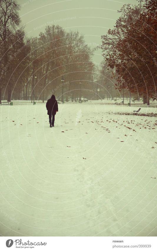 einsam Mensch Mann Baum Einsamkeit Landschaft Blatt Winter Erwachsene kalt Schnee Gefühle Traurigkeit Wege & Pfade Denken gehen Garten