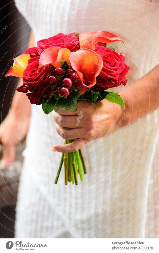 moderner Hochzeitsstrauß Blume Erwachsener Ordnung schön Blüte Blumenstrauß hochzeitlich Braut Brautjungfern Blumen Feier Festakt Nahaufnahme Kleid Eleganz