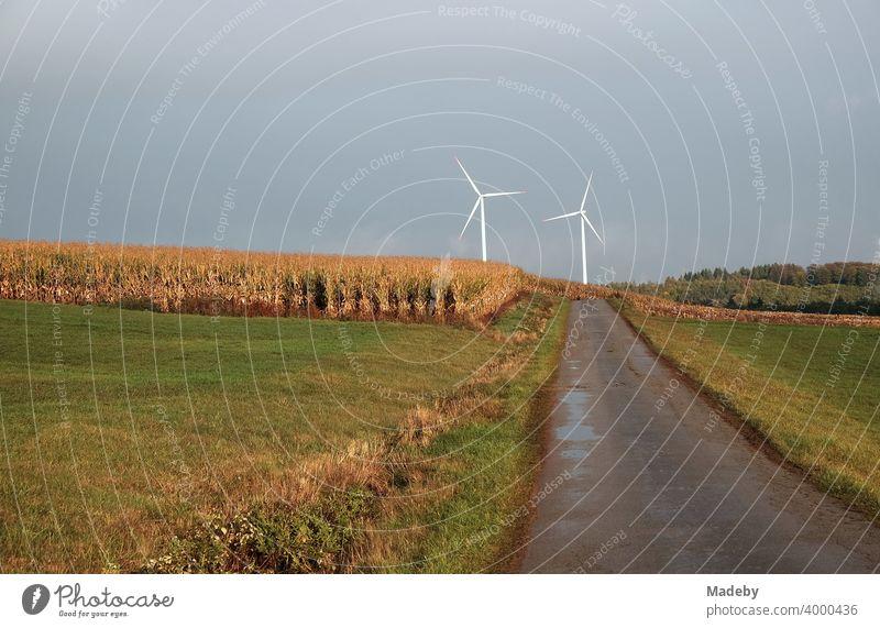 Weiße Windräder am Horizont am Ende einer Straße durch Wiesen und Felder bei Regenwetter in Gembeck am Twistetal im Kreis Waldeck-Frankenberg in Hessen Windrad