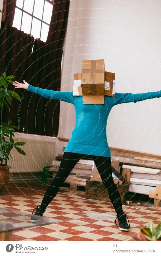 kartonkopf Spaß Karton Paket zuhause Identität Freude Spielen Wohnung Spaß haben lustig Fröhlichkeit verstecken albern Anonymität spielerisch spielen