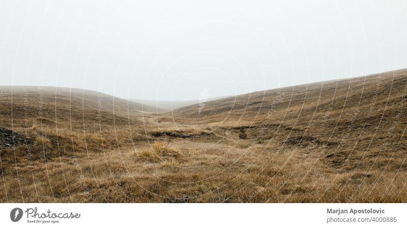 Blick auf die neblige Wiese am Wintermorgen Herbst Hintergrund schön wolkig kalt Landschaft Morgendämmerung früh Umwelt Europa fallen Ackerland Feld Nebel Gras