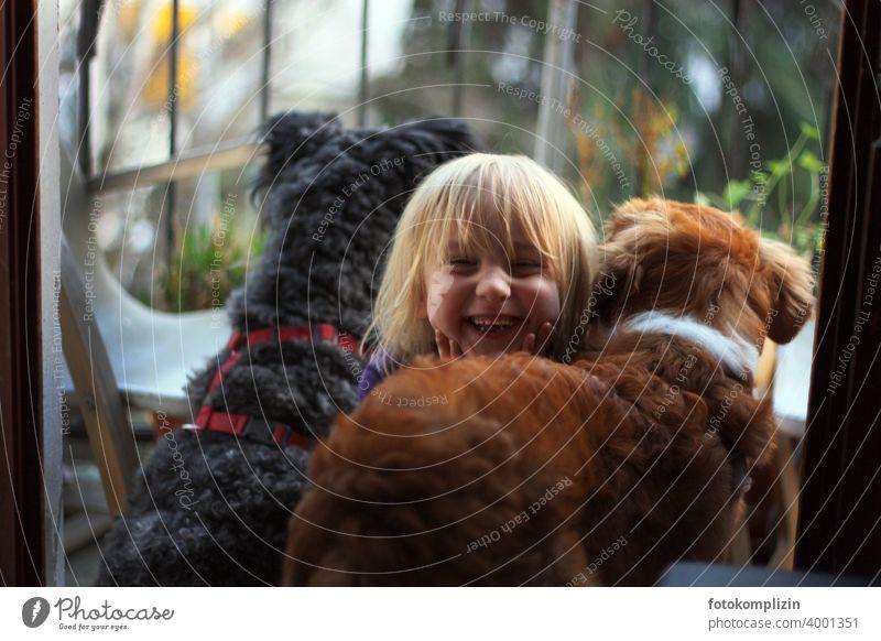 Kind glücklich zwischen zwei Hunden Hundeliebe Tierliebe Haustier Kinder und Tiere Tierkommunikation Mensch und Hund Fröhlichkeit Kleinkind nah Kindheit