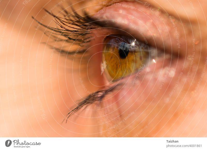 schöne Frau gelbes grünes Auge . Makro, Nahaufnahme. Blick Schönheit niedlich blinzeln Abschluss Blickfang Augenbraue Wimpern Phantasie glühend Regenbogenhaut