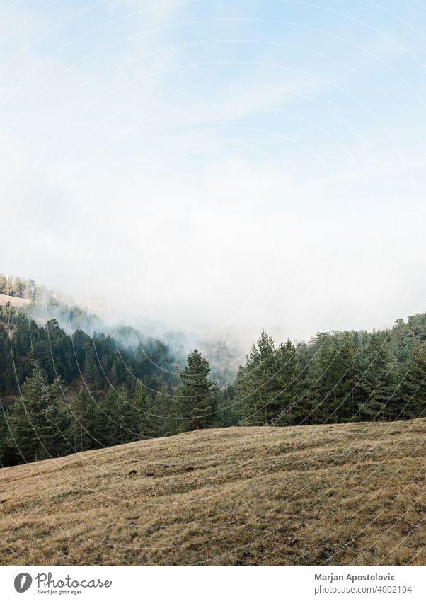 Hügelige Wiese in den Bergen Abenteuer Herbst Hintergrund schön blau Wolken Landschaft Tag Umwelt Europa erkunden Feld Gras Grasland Hügelseite idyllisch