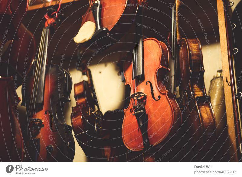 Geigen / Musikinstrumente bei einem Instrumentenbauer Klassik Handwerk geigenbauer Violine Kultur Streichinstrumente Handel Verkauf Laden