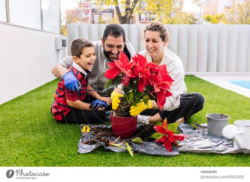 Glückliche Familie im Garten pflanzt Blumen bezaubernd Blüte Junge Kind Kindheit Landschaft Papa Bildung Umwelt umgebungsbedingt Landwirt Vater Väter Gärtner