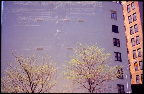 ecke zettberlin und broadway Stadt Baum Haus Wand Architektur Mauer Gebäude Stein Park Häusliches Leben Abenteuer Bauwerk Backstein Skyline Stadtzentrum anonym