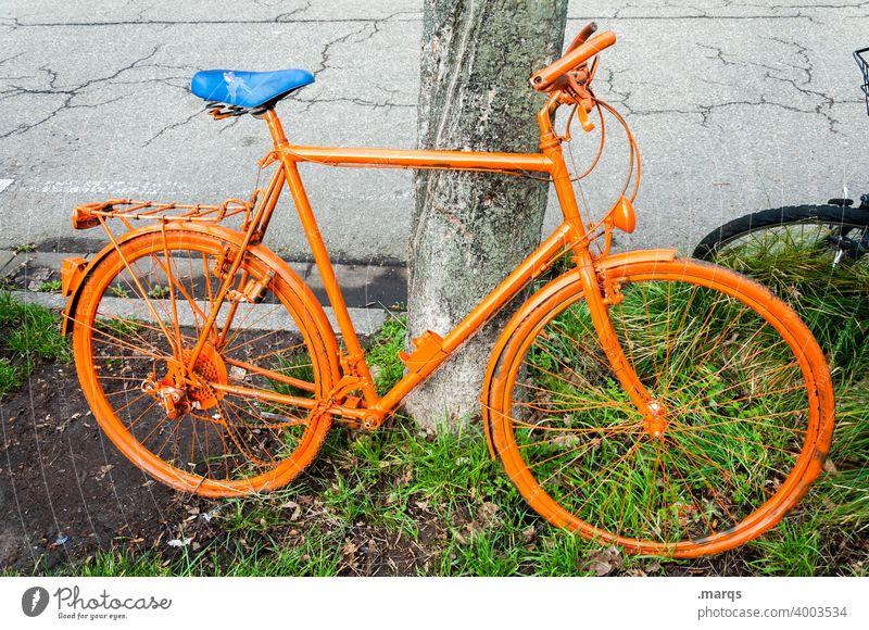Fahrrad orange Fahrradfahren Radfahren Radfahrer Verkehr orangefarbenes Fahrrad anlehnen Pause Ausflug unifarben einfarbig parken Mobilität außergewöhnlich