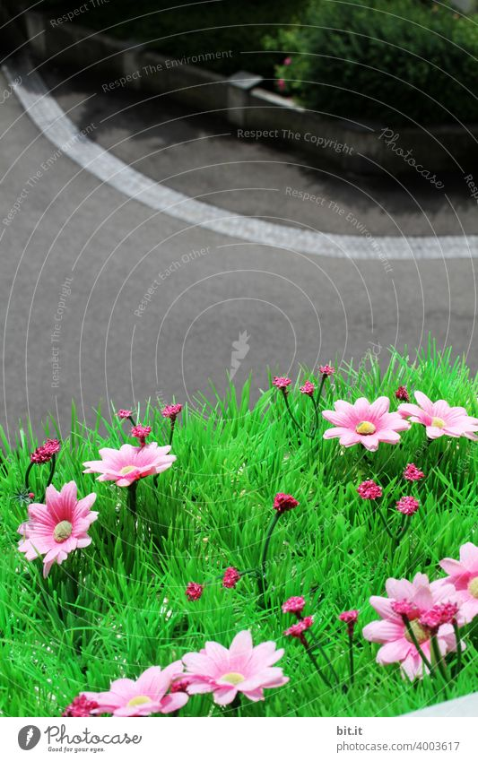 I'am a Plastikgirl, in a Plastikworld...künstliche Blumen, auf dem Fensterbrett, im Lockdown. Frühling Blüte Pflanze Natur schön Blühend Garten grün Sommer